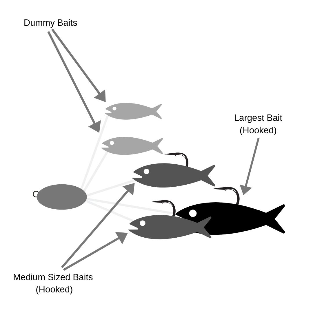 Shop by Lake for Fishing Gear Online | Omnia Fishing